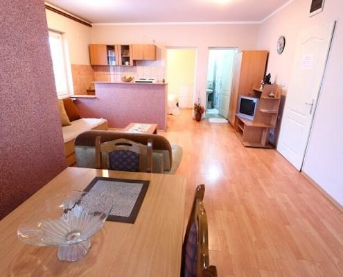 Apartmani Radivojević Sokobanja - Apartman Nikola 1