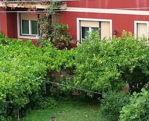 Apartman David Sokobanja