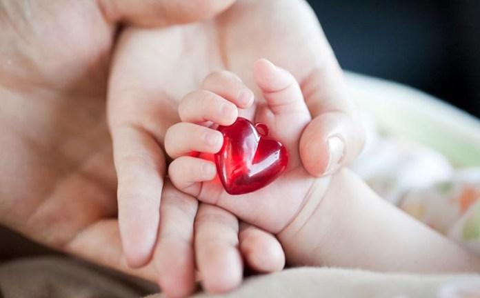 Движение «За жизнь» собирает подписи за запрет абортов