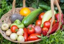 Основы овощеводства по Миттлайдеру
