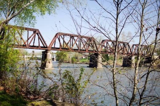 Curriculum Bridge