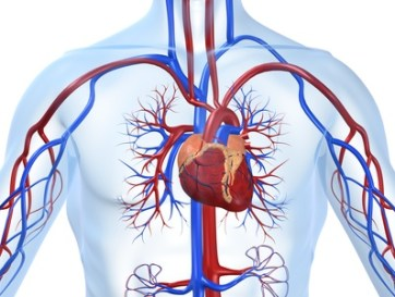 Trombólisis local en tromboembolismo pulmonar