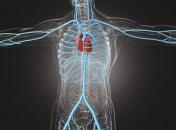 Aterectomía rotacional
