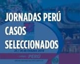 Jornadas Perú, Casos Seleccionados