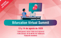 Bifurcation Virtual Summit