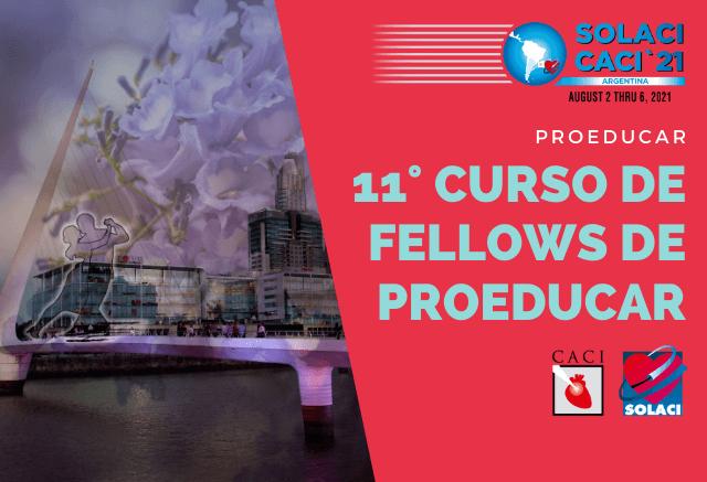Veja todos os conteúdos do 11° Curso de Fellows do ProEducar