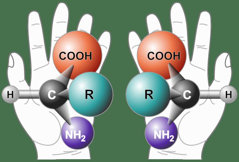 Chiralität (Spiegelbildlichkeit) einer Aminosäure