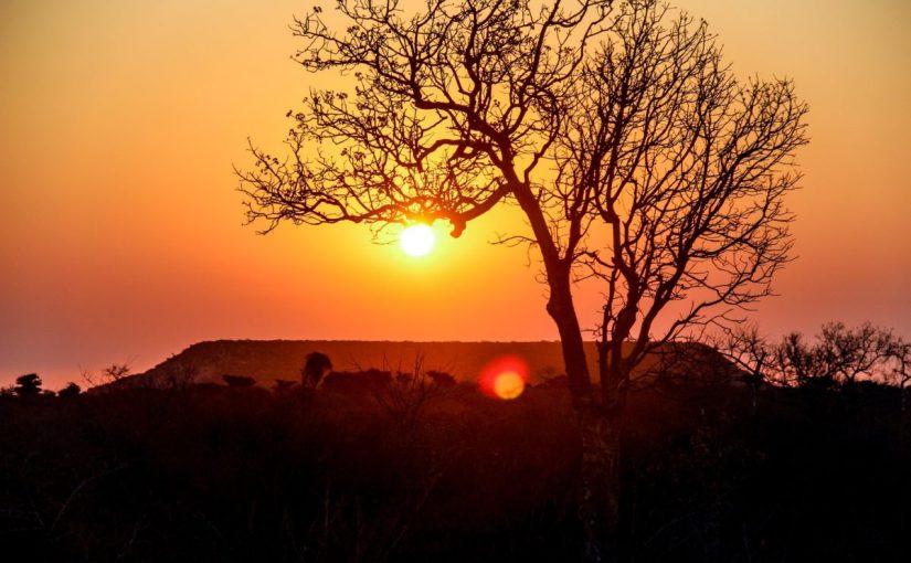 Солнечный парк Ambatolampy удвоит свою мощность