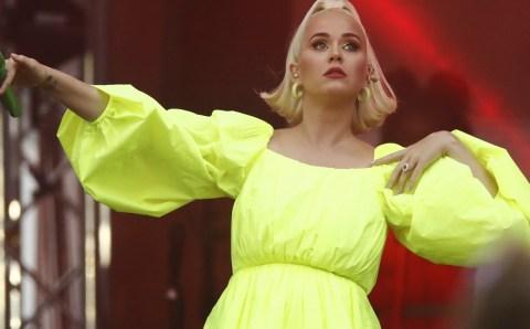 Katy Perry es criticada tras decir que intentará volver vegano a su perro y PETA la defiende