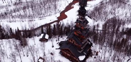 Alaska's tallest Cabin