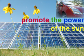 solar panels, flowers, toyota prius