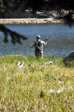 water_series_fisherman