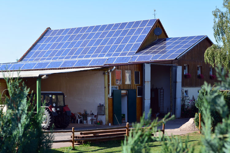 My daughters and I stayed at this farm in Sondershausen, Germany. As you can see, the ENTIRE roof is covered by solar panels. This is a COMMON sight in Germany. [Photo by Christof Demont-Heinrich]