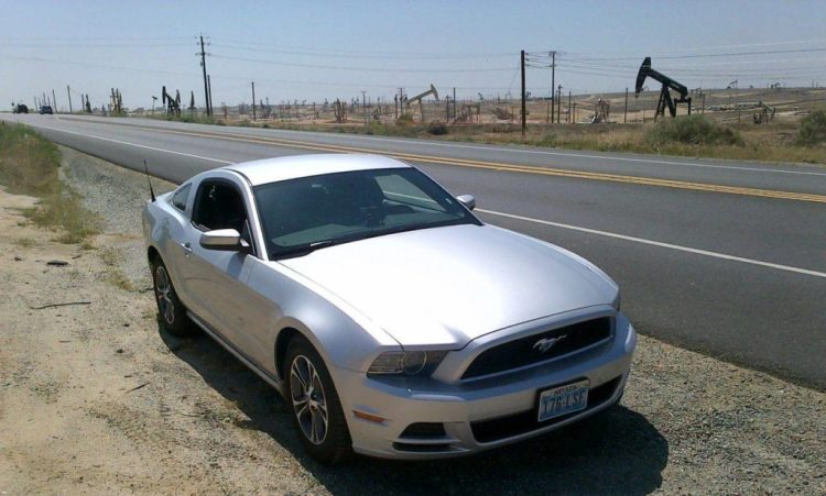Mustang in California