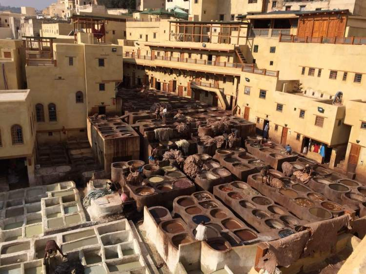 The Tanneries from above