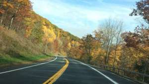 The Road Through The Catskills