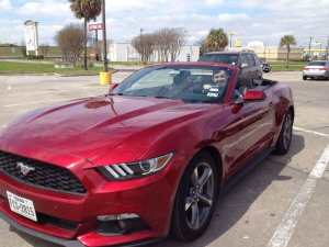 My Rental Mustang 2015 Series