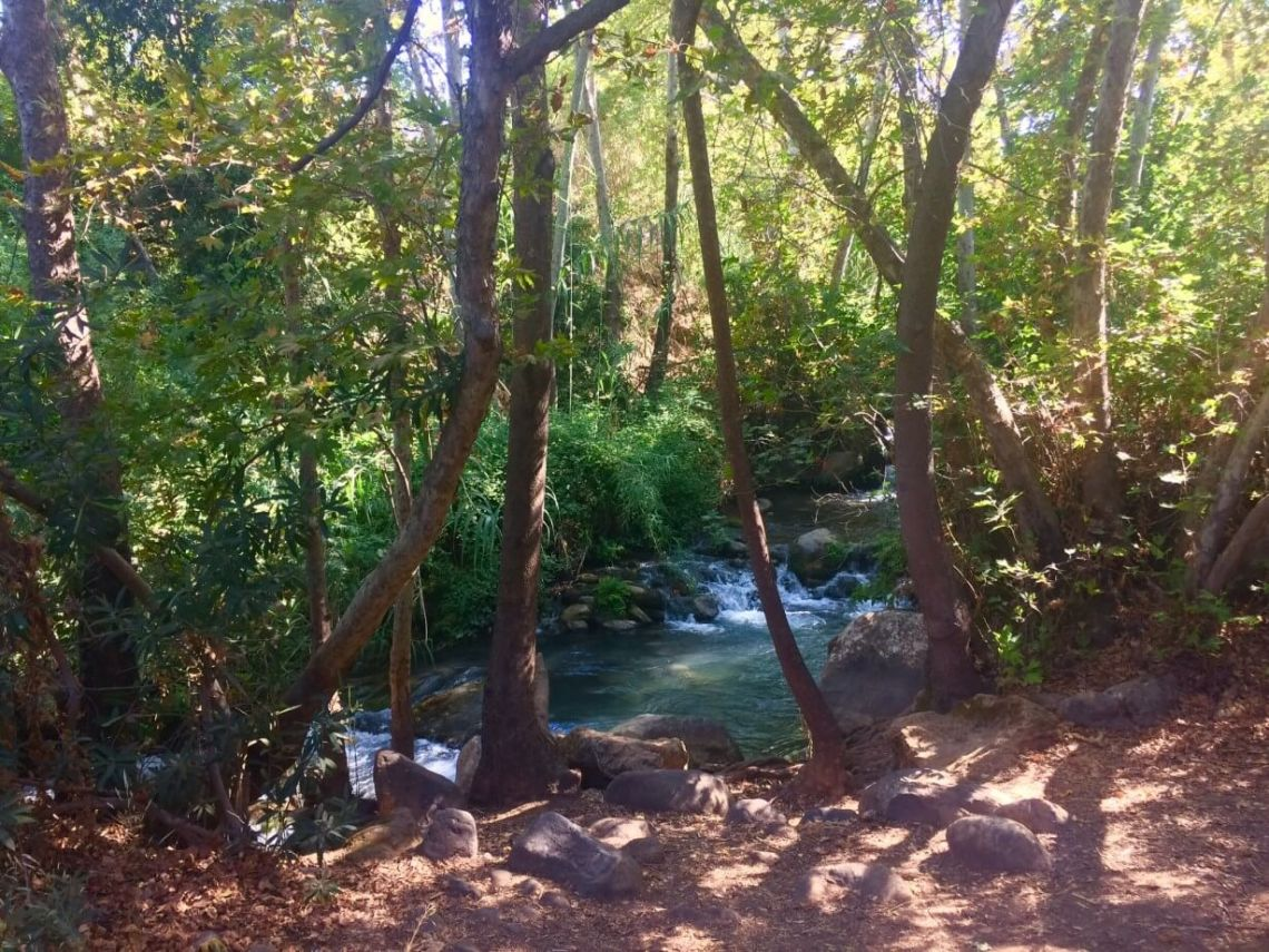 The Hermon Stream in Israel