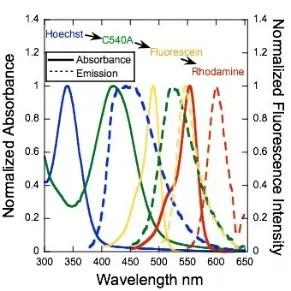 Green antenna increases solar cell efficiency