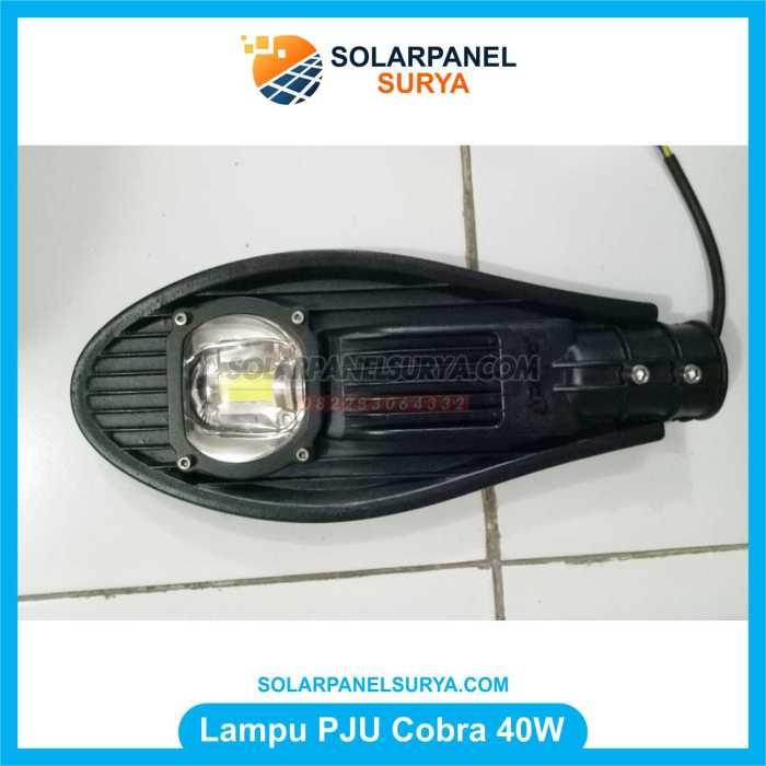 Gambar lampu jalan pju kobra 40 Watt
