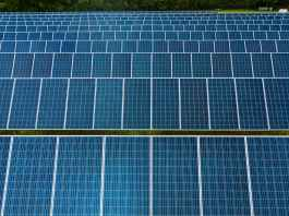 rows of solar modules in photovoltaic power station