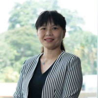 Our Solar PV Project Will Deploy Over 146,000 Solar Panels Covering An Area Of Around 45 Football Fields, Jen Tan, Sembcorp Industries