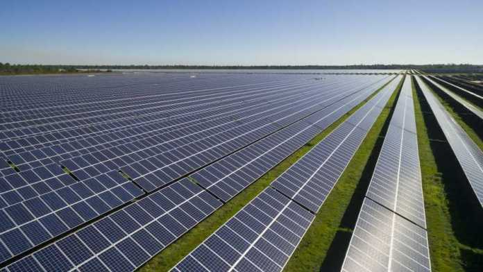 Waaree Supplies 2 MW Mono PERC Solar Modules For A Project In Vietnam