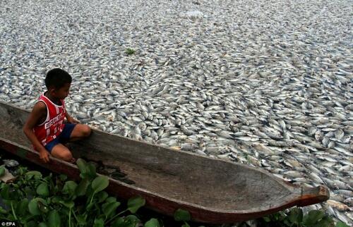 20 Fotos Impactantes Que Demuestran La Realidad Del Cambio Climático | Noticias de ecologia y medio ambiente (1/3)