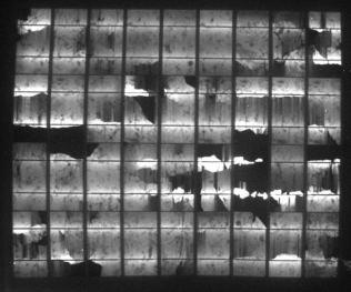 Elektrolumineszenz-Aufnahme des flexiblen polykristallinen Solarmoduls nach dem Winter