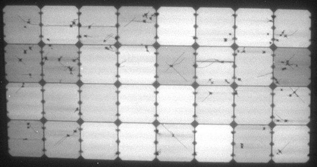 Elektrolumineszenz-Aufnahme des flexiblen Solbian SP Solarmoduls nach dem Winter
