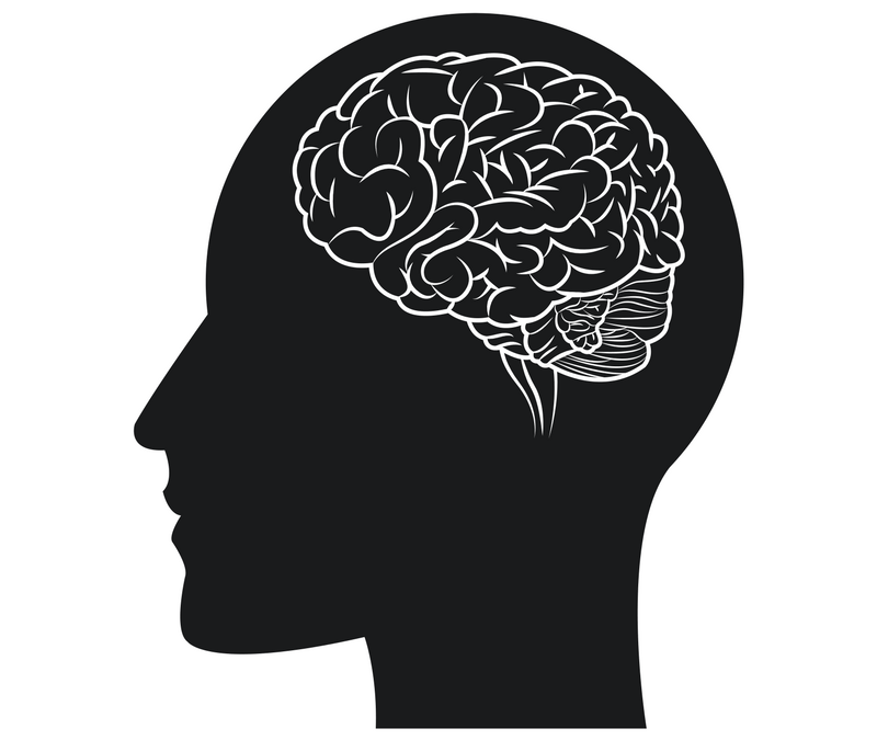 Why our cognitive function is a brilliant tool (when used appropriately)
