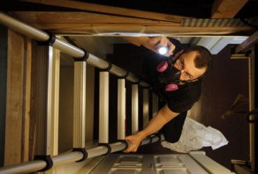 Climbing up a ladder into an attic