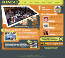 Bingo Colorado Website Design Services