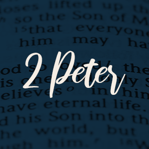 1 peter soldiers for faith