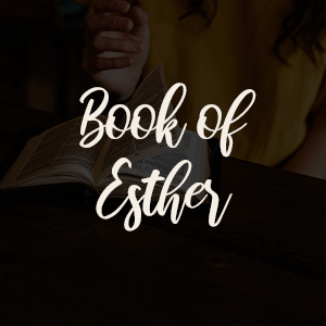 book of esther youth ministry soldiers for faith houston texas