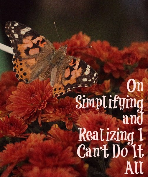 On Simplifying and Realizing I Can't Do It All