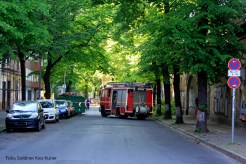 Feuerwehrfrauen zersägen umgefallenen Baum in der Nordbahnstraße (2)