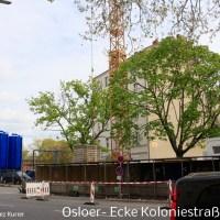 Grundwasser-Pumpleitung an der Osloer Straße demontiert