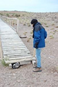 patagonien-5