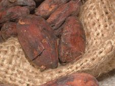 cacao-beans-91083__480