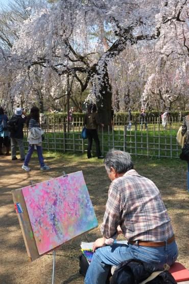 Japon, sakura ( Soleil Levant 75 )
