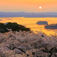 L'archipel de Matsushima, un des plus beaux sites du Japon..