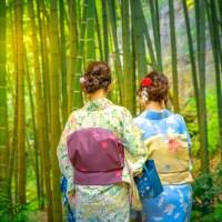 La bambouseraie de Kamakura..