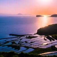 Image du jour: Les rizières de Kyushu.