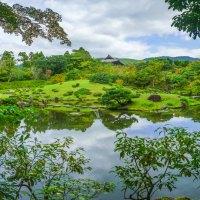 Nara Koen, le grand parc au coeur de Nara..