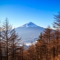 Yamanashi: Le Mont Fuji.