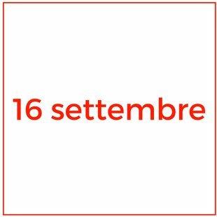 11 (13)
