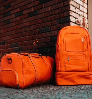Sole Premise Travel Carry On Sneaker Bags