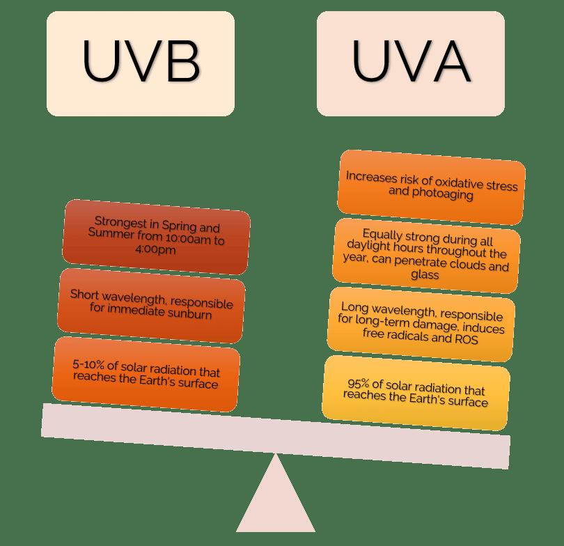 UVA vs UVB comparison