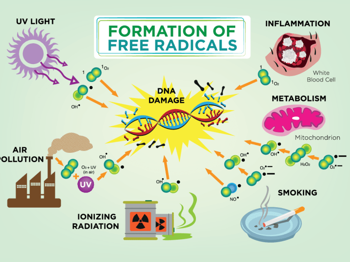 What are free radicals, anyway? Image
